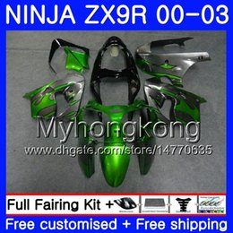 $enCountryForm.capitalKeyWord UK - Body For KAWASAKI NINJA ZX 9R 9 R ZX 900 ZX9R 00 01 02 03 216HM.21 ZX900 900CC ZX9 R ZX-9R Grey flames green 2000 2001 2002 2003 Fairing Kit