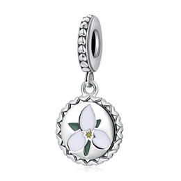 $enCountryForm.capitalKeyWord Australia - 2018 New Authentic 925 Sterling Silver Mixed Enamel Flower With Crystal Pendant Bead Charm Fit Pandora Bracelet Bangle DIY Jewelry