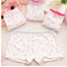 b90d0ee39f0 Sale Underwear 4pcs lot Baby Girl Child s For Underpants Shorts For  Nurseries Children s Boxer Underwear Kids Panties B2388