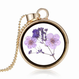 $enCountryForm.capitalKeyWord NZ - 2018 Fashion Women Round Glass Dried Flowers Pendant Necklaces Floating Locket Necklaces Long Chain Best Friend Necklaces