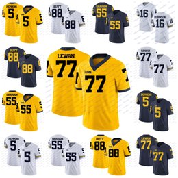 ed368e332 NCAA Michigan Wolverines 5 Peppers 16 Denard Robinson 55 Brandon Graham 77  Taylor Lewan College Football Jersey White Blue Yellow Stitch