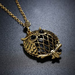 Glass Magnifier Gold NZ - Fashion Retro High Quality Gold Colors Magnifier Magnifying Glass Sliding Top Magnet Sweater Chain Animal Pendant Owl Glass Necklace D548S