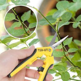 $enCountryForm.capitalKeyWord NZ - H19173 6.5''Gardening Hand Pruner Pruning Shear Functional Cutter Straight Stainless Steel Blades Funktionelle Cutter Manual De Jardine