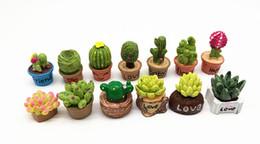 Mini Micro set online shopping - New Design Small Succulent Flower Vase Set Miniature Fairy Garden Home Decoration Mini Craft Dollhouse Micro Decor Diy Gift Moving Forest