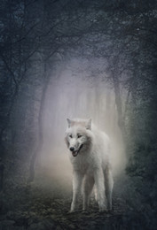 Discount backdrop background for photography forest - Laeacco Clouded Forest White Wolf Scenic Photography Backgrounds Vinyl Custom Seamless Digital Backdrops Props For Photo