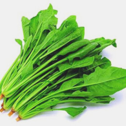 Seed Heat UK - Free Shipping 100 Pcs bag Big leaf delicious seeds,Water spinach seed Rich Nutrition green vegetables heat-resisting