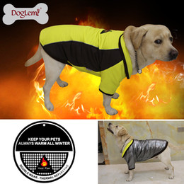 $enCountryForm.capitalKeyWord NZ - 2018 High Technology Heat Reflective Dog Coat Outdoor Waterproof Warm Pet Clothes Reversible dog coat warm pet jacket