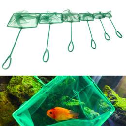 "$enCountryForm.capitalKeyWord NZ - Aquarium Fish Tank Square Shrimp Small Betta Tetra Fish Net 3""-10"" 6 Sizes #080925#"