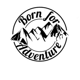 Chinese  born for adventure cool graphic vinyl car decal sticker laptop decal CA-0085 manufacturers