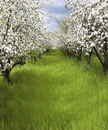 $enCountryForm.capitalKeyWord Canada - Outdoor Spring Scenic Photography Backdrops Printed Pear Trees White Flowers Baby Kids Children Girls Photo Shoot Background Green Grassland