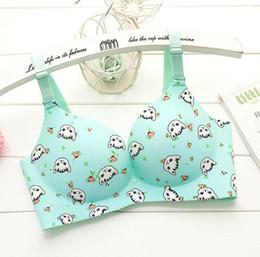 368fd9b94aa Sexy Woman Young Girl Push Up Bra Seamless French Romantic Gathered Bra  Printed Anima Bra Cute Sweet Underwear