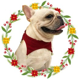 $enCountryForm.capitalKeyWord UK - Dog Collar Bandanas Winter Dog Collar Scarf Red Scarf Triangle Bell Scarf Dog Collar Pet Costumes