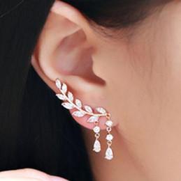 Ingrosso Corea Personalità Micro intarsio zircone foglia resina orecchino a perno lungo tratto di cristallo zircone prevenire allergia orecchino della vite prigioniera lega gioielli donna