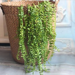 $enCountryForm.capitalKeyWord NZ - Artificial Succulents Pearls Fleshy green Vine branches wall Hanging Plastic Rattan plants fall home wedding decoration flowers