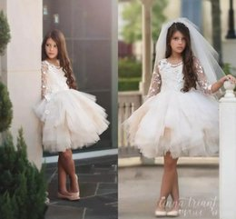 Wholesale shirts for birthday resale online - 2018 New Flower Girls Dresses For Weddings Jewel Neck Long Sleeves Lace Flowers Knee Length Tiered Birthday Children Girl Pageant Gowns