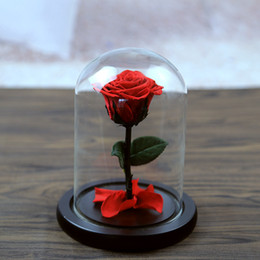 Discount beautiful white roses - 5 Color The Beautiful Glass Cover Fresh Preserved Rose Flower Wedding Home Birthday Party Car Decoration