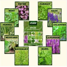 Discount heirloom herb seeds ZLKING 1100 Spice Combo Mix Flower Seeds Herb Vegetable Seed 100% Organic Non GMO Heirloom Bonsai Seeds For Gardening Pl