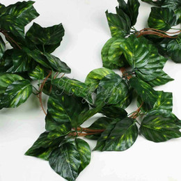 $enCountryForm.capitalKeyWord Canada - 10pcs Artificial Vine Big Leaf Rhodea Ivy Vine Garland Plants Fake Plants Flowers Wedding Home Decor 7 .5 Feet Artificial Ivy