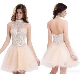 $enCountryForm.capitalKeyWord NZ - Back Halter Neck Light Orange Homecoming Dresses Short Organza Short Prom Dresses Modest New Arrival Crystal Cute Club Gowns