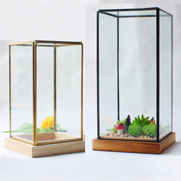 Vases For Terrariums Australia New Featured Vases For Terrariums