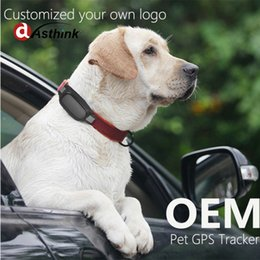 Gps Gsm Tracking Australia - AS20 Waterproof MiNi Pet GSM GPS Tracker pet Dog Cat collar locator SOS Alarm Trace Playback GPS Tracking