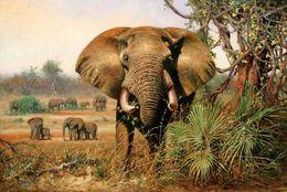 $enCountryForm.capitalKeyWord Australia - Modern Home Deco High Quality HD Print animal Oil painting canvas African Landscape Elephant Classical Reproduction Home wall Art Decoration