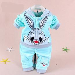 Cartoon Rabbit Hoodies Australia - Hot Baby Clothing Set 2015 Spring Autumn Baby's Set Cartoon Rabbit Boys Girls Clothes Twinse Suits Hoodie Pant Children Clothing