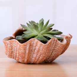 China Fleshy Flowerpot Originality Resin Shellshape Desktop Bonsai Container Flower Pots Planters Succulent Pots Home Deor Hot Sale 10cy gg cheap porcelain enameled suppliers