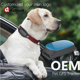 Gps Gsm Tracking Australia - Newest hot sell AS20 Mini GPS Tracker GSM GPRS Tracking Device For Pet dog cat collar Security