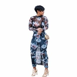 China Hot Style Mesh Long Sleeve Bodycon Dress Elastic Transparent Print Dress Evening Celeb Party Long Dress WY6421 cheap blue hollow suppliers