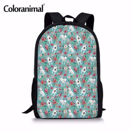 Wholesale Coloranimal Bady Kids Backpack School Bag for Teenager Girl Boy Large Capacity Schoolbags D Bull Terrier Dog Print Kid Backpack
