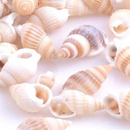 Pear shaPe earrings online shopping - New Creative DIY Gift Natural Conch Shell Beads Striped Snails Hand Made Parts Jewelry Bracelet Women Earring Hot Sale dy aa