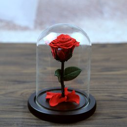 Fresh White Rose Flowers Australia - 5 Color The Beautiful Glass Cover Fresh Preserved Rose Flower Wedding Home Birthday Party Car Decoration