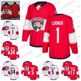 Discount panther hockey - 2018 New Florida Panthers  1 Roberto Luongo 5  Aaron Ekblad 17 defaccd8d