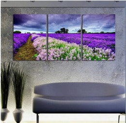 Discount one piece new world figures New 3 Piece Free Shipping Hot Sell Modern Wall Painting fairy purple world Home Decorative Art Picture Paint on Canvas P