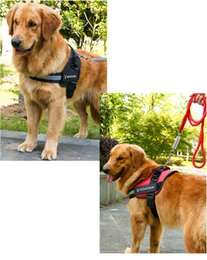 Small Traction Belts Canada - 2018 Hot Sale Pet Collar High Quality Oxford K9 Breathable Chest Belt Pet Traction Rope S M L X