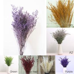 1 mazzo di fiori secchi naturali fatti a mano artificiali della pianta per  il regolatore domestico per l\u0027artigianato di Scrapbooking