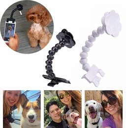 Discount stick toy for cats Pet Selfie Stick for Pets Dog Cat Take Capture Photos Training Toy pet supplies clip phone Attachment fit iPhone Samsung