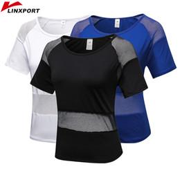 $enCountryForm.capitalKeyWord NZ - Women's Dry Fit Shirts Elastic Yoga Mesh Sports T Shirt Workout Gym Tights Gym Running Tops Short Sleeve Tees Blouses Sportswear