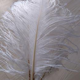 Discount feather centerpieces - wholesale 200pcs lot 8-9inch White Ostrich Feather Plume,Wedding Feather Centerpieces Home decoraction party event suppl