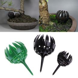 $enCountryForm.capitalKeyWord NZ - Bonsai Tool Fertilizer Cover Basket Box Dome Cover Basket Case Plastic Plant Bug Portable Green Brown