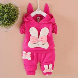 Cartoon Rabbit Hoodies Canada - 2018New Spring Autumn Baby Clothing Cartoon Rabbit Child Long Sleeve Hoodies Cotton Suit Toddler Sets Kids Outfits Girls Clothes