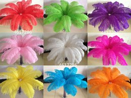 $enCountryForm.capitalKeyWord Australia - Wholesale a lot 8-10inch 20-25cm beautiful ostrich feathers for Wedding centerpiece Table centerpieces Party Decoraction supply FM-0004