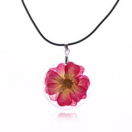 stun glasses 2019 - 2017 Stunning Beautiful Dried Flower Daisy Flower Transparent Crystal Glass Pendant Women Necklace Valentine Gift cheap