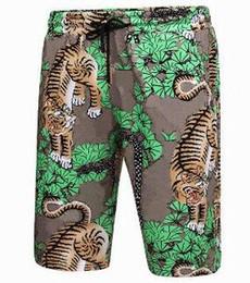906a11efde4 City Italy Fashion Tiger Tree Printed Men Beach Shorts Cotton Summer Spring  Swimming Classic Sport Short Pants Swimwear Board Trunks Green