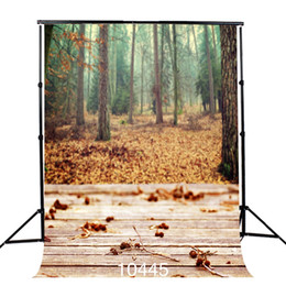 backdrop computer painted scenic background Canada - Deciduous Forest Photography Backdrops Wooden Floor 3D Backgrounds for Photo Studio Theater Vinyl Cloth Computer Printed Custom