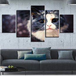 Art Canvas Prints Australia - Pictures Wall Art Canvas HD Printed 5 Pieces Lovely Cat Paintings Modular Animal Kitten Poster Living Room Home Decor Framework