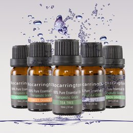 Lavender trees online shopping - Nocarrington Beauty Aromatherapy Top Essential Oil Pure Therapeutic Grade Basic Sampler Gift Set Kit