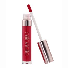 Chinese  Factory Direct! Antoinette Top Sale Long Lasting Ultra Matte Liquid Lipstick Water Proof Fast Dry 2018 New launching Original Brand in Stock manufacturers