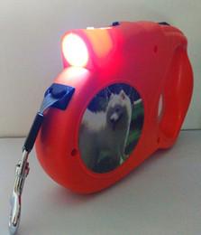 $enCountryForm.capitalKeyWord NZ - 5M Retractable Dog Leashes lead 60KG pulling force Pets Leash Lead Automatic flashlight Dog Walking Lead for big dog